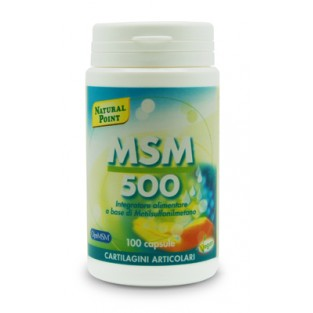 MSM 500 Natural Point - 100 Capsule
