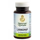 Maharishi Ayurveda - Laringomap