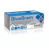 Blue Brain Named - 10 Stick