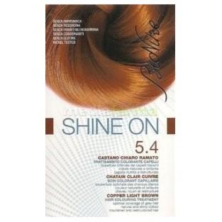 Colorazione Bionike Shine On - Castano chiaro ramato 5.4