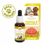 Training & Education Australian Bush Flower Animal - 30 ml