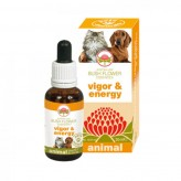 Vigor & Energy Australian Bush Flower Animal - 30 ml